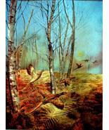 Pheasant in White Birch (Dufex Foil Print #155398)  - $4.99
