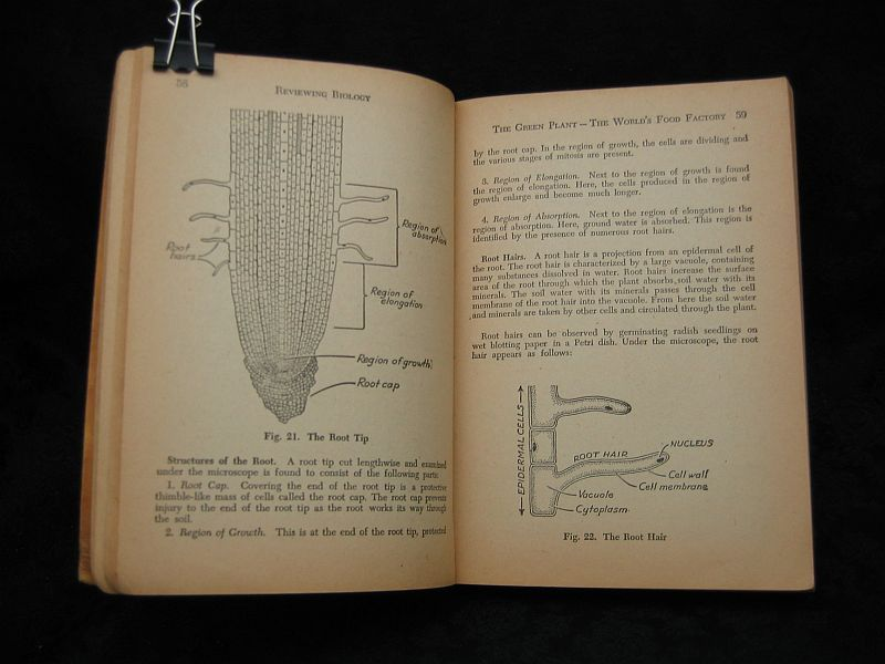 Reviewing Biology by Mark A. Hall  1955 Amsco School Publ