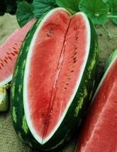 HeirloomSupplySuccess 10 Heirloom Congo Watermelon seeds  - $3.99