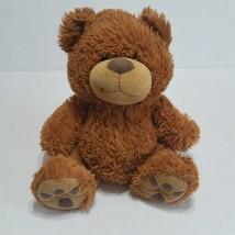 The Petting Zoo Brown Plush Bear 14 inch Stuffed Animal Teddy Bear - $9.87