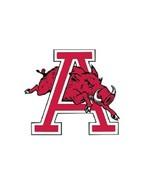 Arizona Razorbacks College Football Magnet - $4.99