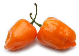 25 Pcs Orange Habanero Seeds, Habanero Pepper Seeds, Heirloom Hot Peppers - $13.99