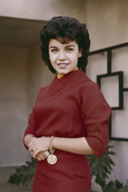 Annette Funicello Smiling Portrait 1960's in Red Dress 18x24 Poster - $23.99