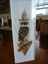 Vintage MCM Mid century Lucite owl / Hand carved & painted / Wall Plaque... - $74.25