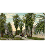 Palm Garden New Orleans Louisiana vintage Post Card - $5.00