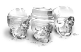 Tovolo Skull Ice Molds - $12.99