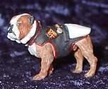 Pewter Bulldog Painted W USMC Coat United States Marine