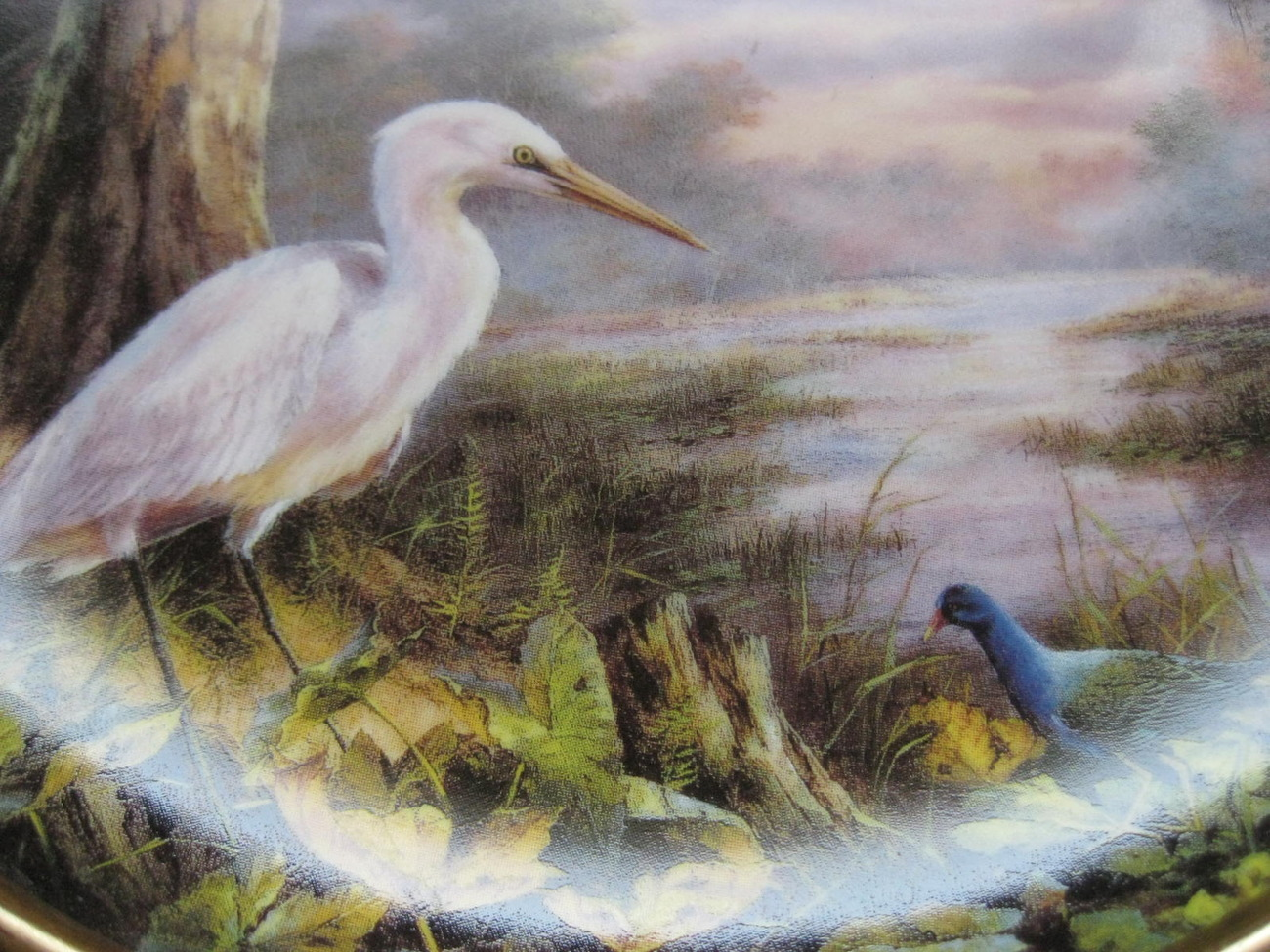 Primary image for Framed Plate-TRANQUIL BEAUTY featuring Everglades National Park -Danbury Mint