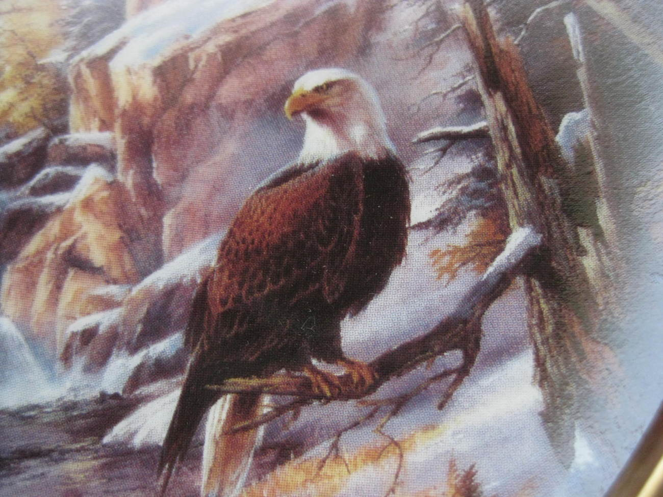 Primary image for Danbury Mint Framed Eagle Plate - ICE CAPPED MAJESTY GLACIER NATIONAL PARK