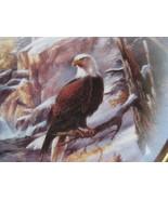 Danbury Mint Framed Eagle Plate - ICE CAPPED MAJESTY GLACIER NATIONAL PARK  - $22.00