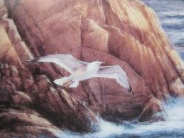 Framed Plate - AFTER THE STORM featuring BIG SUR - Danbury Mint - $22.00