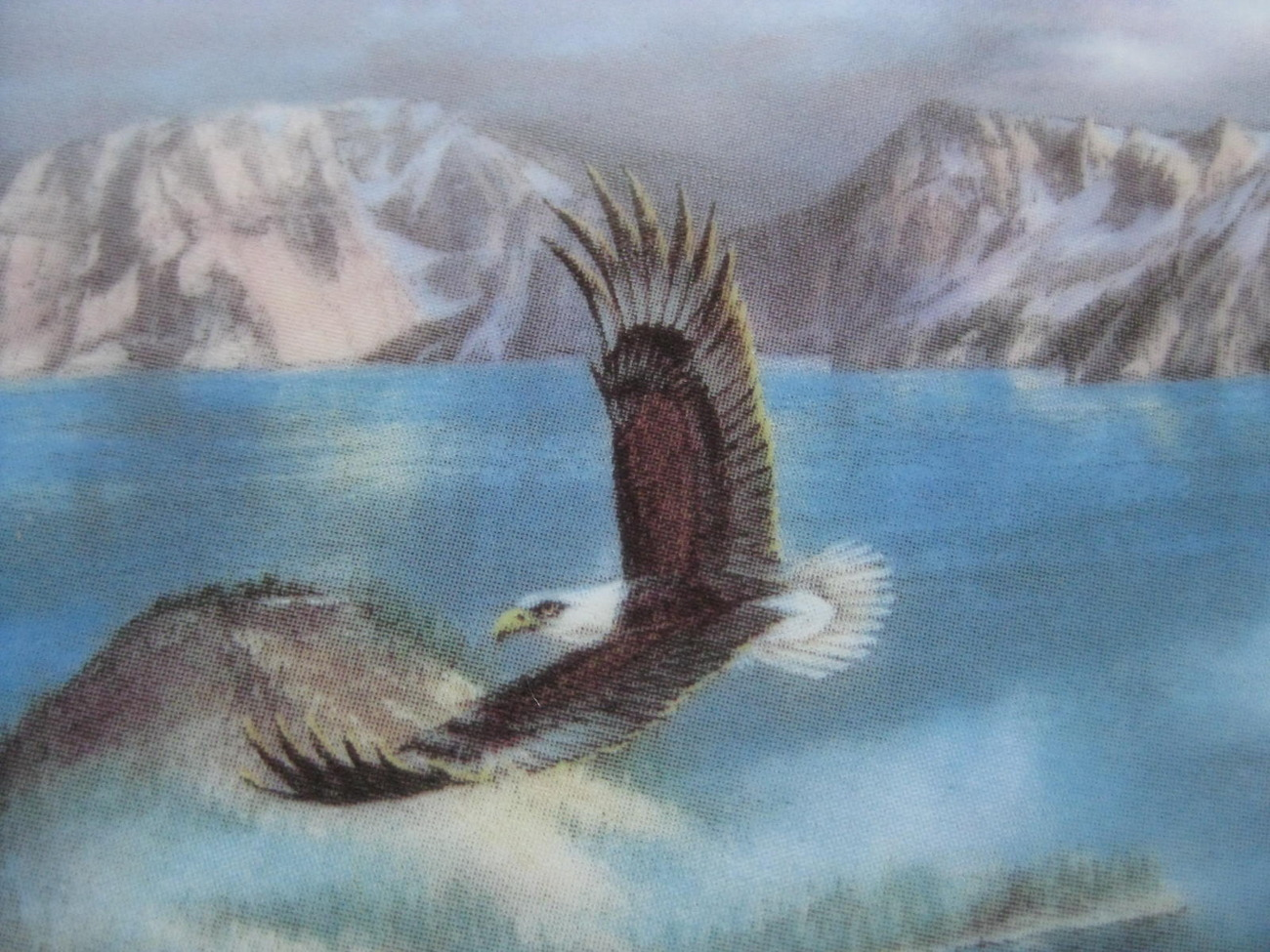 Framed Plate - FLYING FREE featuring CRATER LAKE NATIONAL PARK - Danbury Mint image 3