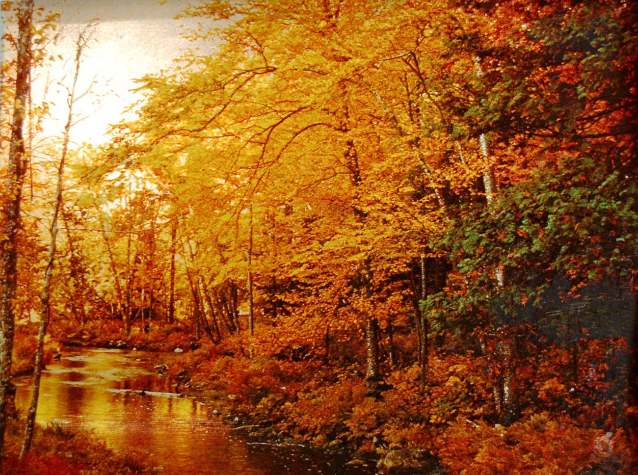 155363 autumn stream