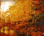 155363 autumn stream thumb155 crop