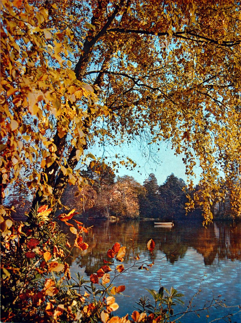 152528 autumn lake at dusk