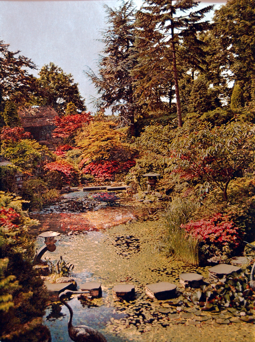 155549 japanese water garden   compton acres