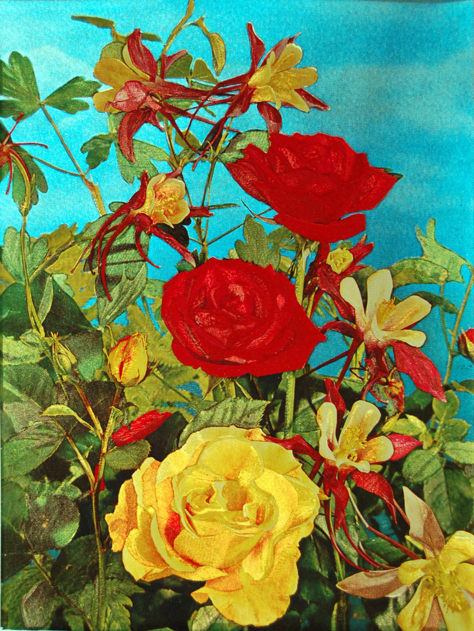 W5254m mixed roses