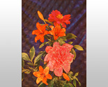 3d 3013m pink and orange flowers thumb155 crop