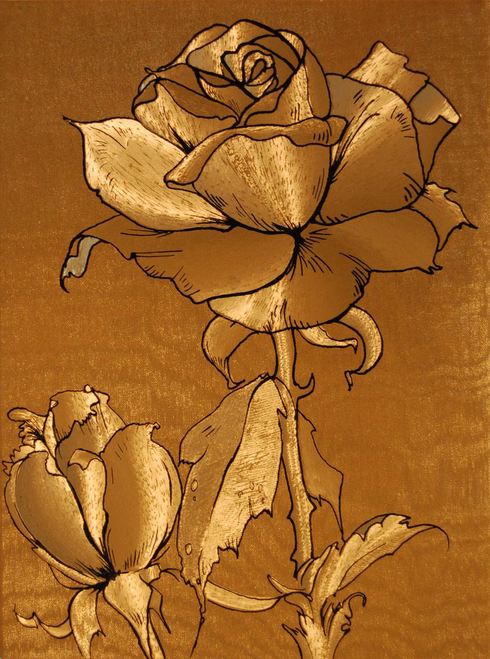 152610 rosa peace hybridtea