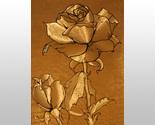 152610 rosa peace hybridtea thumb155 crop