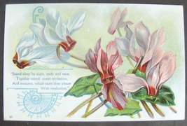 VTG PHILOSOPHICAL POSTCARD FLORAL EMBOSSED UNUSED - $6.99