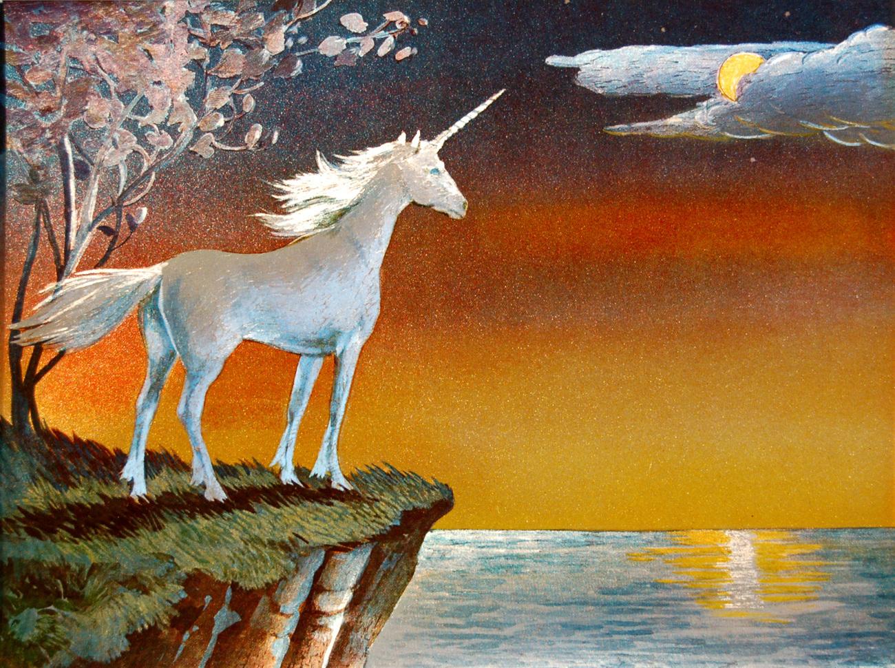 000000 unicorn