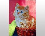 W5102m kitten in basket thumb155 crop