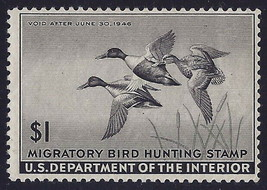 "RW12 - $1 F-VF ""Shoveler"" Duck Stamp Mint NH Cat $95 - $49.49"