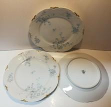 Lorenz Hutschenreuther Set Of Three Dinner Plates Germany White Gold Floral - $34.65