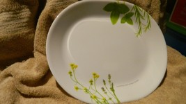 Corelle Europ EAN Herbs 12.25 Inch Oval Serving Platter New Free Usa Shipping - $28.04
