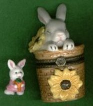 BUNNY RABBIT IN BASKET HINGED BOX - £8.48 GBP