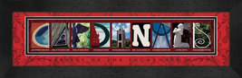 University of the Incarnate Word Officially Licensed Framed Campus Lette... - $39.95