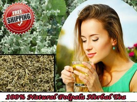 80g Pure Natural Aerva lanata ( Polpala ) Herbal Tea FREE SHIPPING - $8.86
