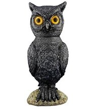 Animated Owl Halloween Prop - €28,39 EUR