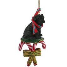 Conversation Concepts Shar Pei Black Candy Cane Ornament - $15.99