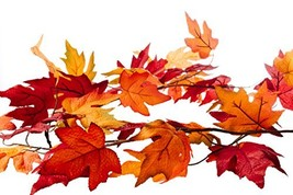 CraftMore Fall Maple Leaf Garland - 6 Feet - Colors Range from Dark Red ... - $28.47