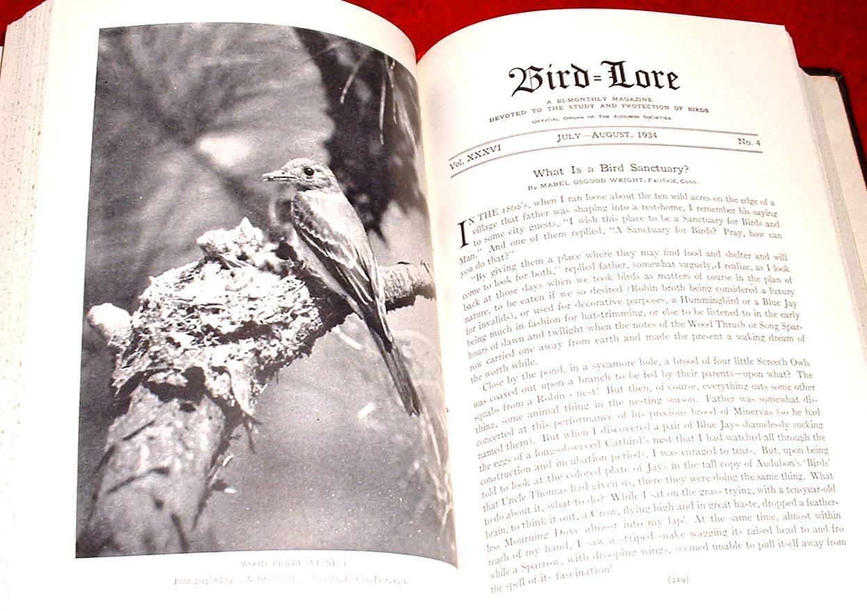 6 Bird Lore Bound 1934 Bird Study Audubon illustrated Protection Audubon
