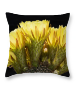 Yellow Gold Cacti Flowers, fine art, seat cushi... - $41.99 - $69.99