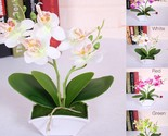 Artificial Flower + Vas Butterfly ORCHID Flower Real Touch With Leaves