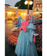 Custom-made Cartoon Cinderella Fairy Godmother Dress Cosplay Costume - $149.00