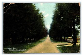 Winston Salem, NC North Carolina, Cedar Avenue Germany Postcard Posted 1... - $6.92