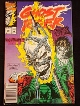 Marvel Comics Ghost Rider #30 Comic Book Nightmare's Realm 1992 - $3.95