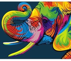 Paint By Numbers DIY Kit Colourful Elephant 40CMx50CM Canvas - $13.86