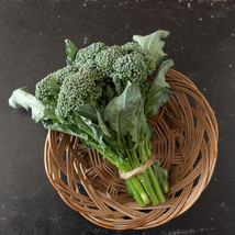 BC1611 Broccoli Seed ,Vegetable Seeds, Ship From US - $16.00
