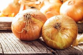 Onion Seeds - Walla Walla - Vegetable  Seeds - Outdoor Living - FREE SHIPPING - $37.99+