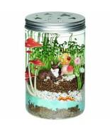 Mason Jar Terrarium Plants Glow in the Dark Light DIY Maker Making Kids ... - $40.48