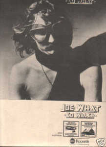 * 1975 JOE WALSH SO WHAT POSTER TYPE AD