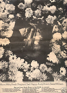 ANDY BOWN SWEET WILLIAM POSTER TYPE AD 1973