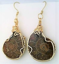Fossilized Ammonite Gold Wire Wrap Earrings 3 - $45.00
