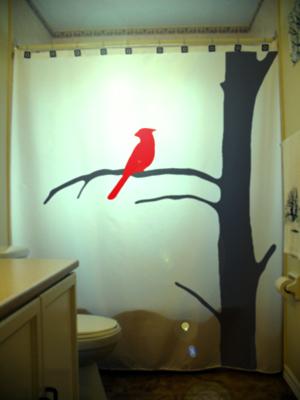 Bird cardinal on a tree  75
